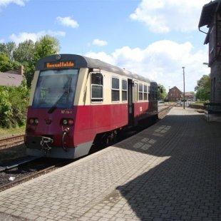 DSC04944 (Medium)